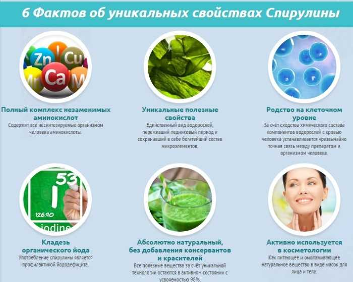 Спирулина: полезные свойства, противопоказания для женщин и отзывы