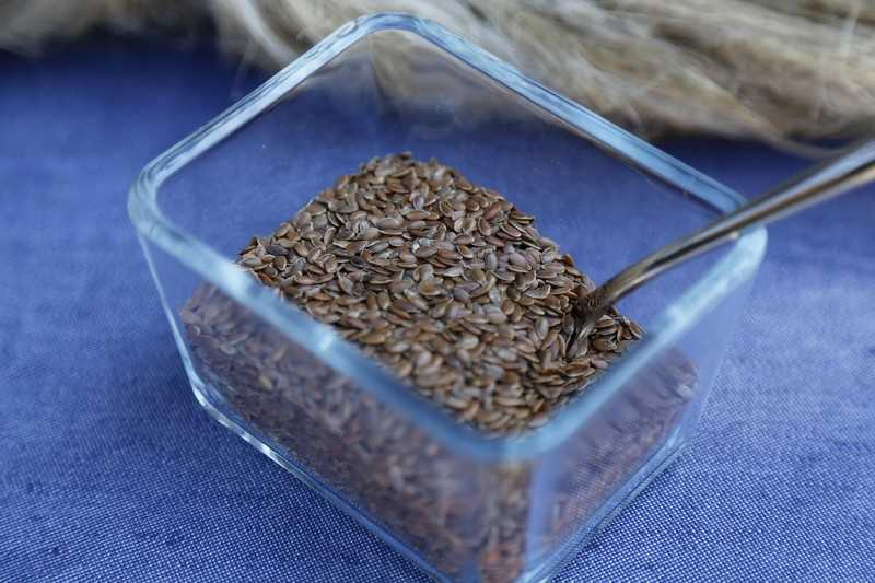 Что лечит семя льна и его применение в народной медицине