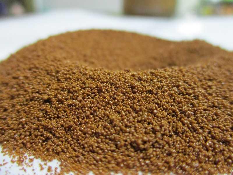 Цикорий растворимый - полезные свойства и противопоказания, вред и состав цикория