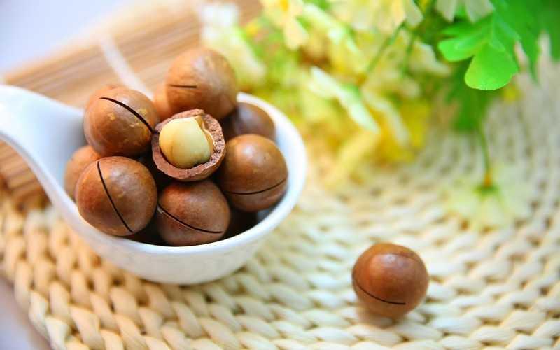 Орех макадамия для похудения и против целлюлита