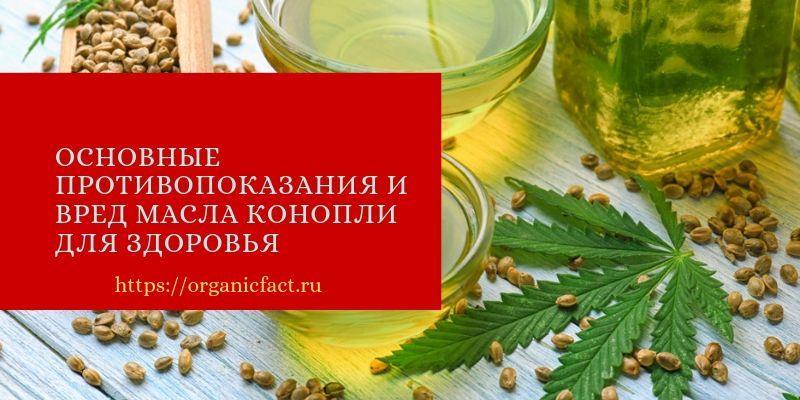Основные противопоказания и вред масла конопли для здоровья