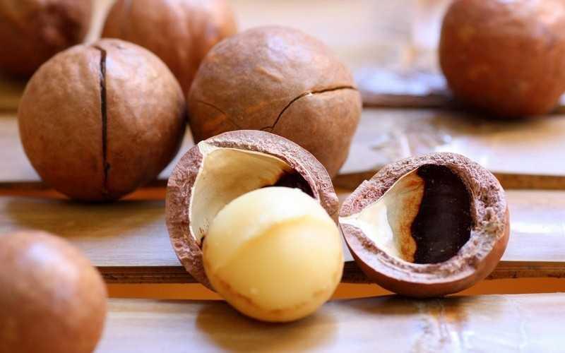 Полезные свойства и состав орех макадамия, противопоказания
