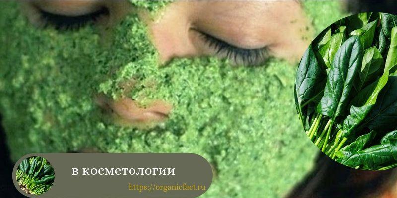шпинат в косметологии