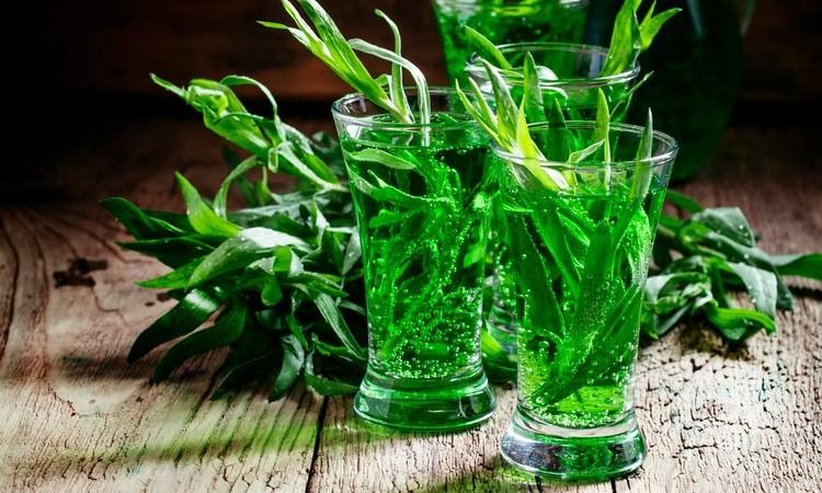 У травы тархун лечебные свойства и противопоказания при сахарном диабете определяются содержанием кумаринов.