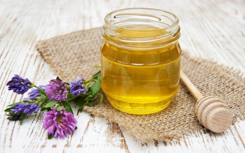 Эспарцетовый мед польза