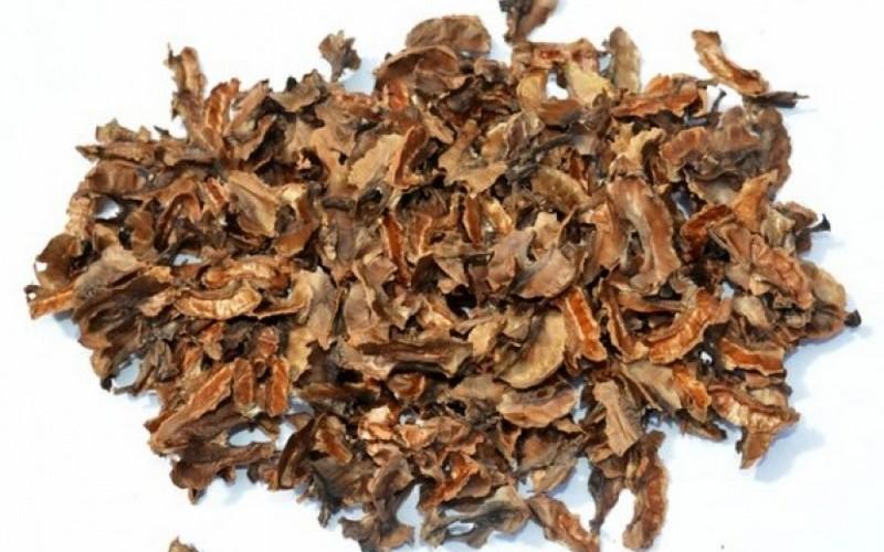 Перегородки грецких орехов польза и вред для здоровья