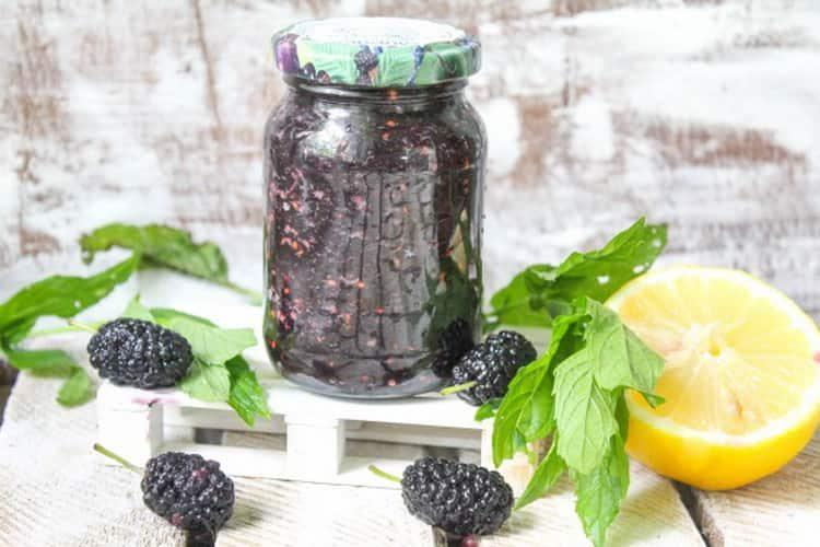 Применение в народной медицине ягод шелковицы