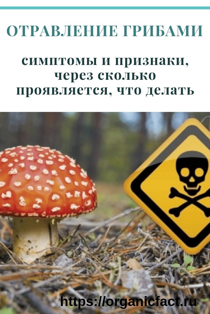 Слишком опасны грибные токсины для беременных женщин.