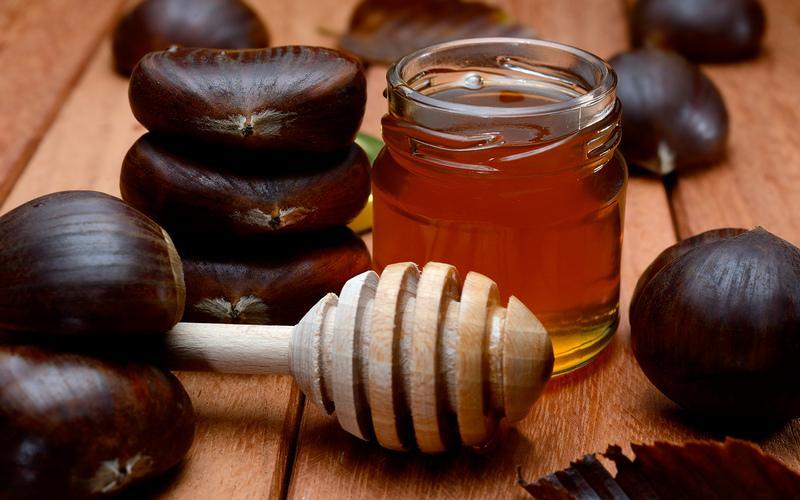 Каштановый мед — полезные свойства, противопоказания