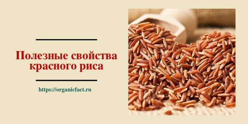 Полезные свойства красного риса — в его составе