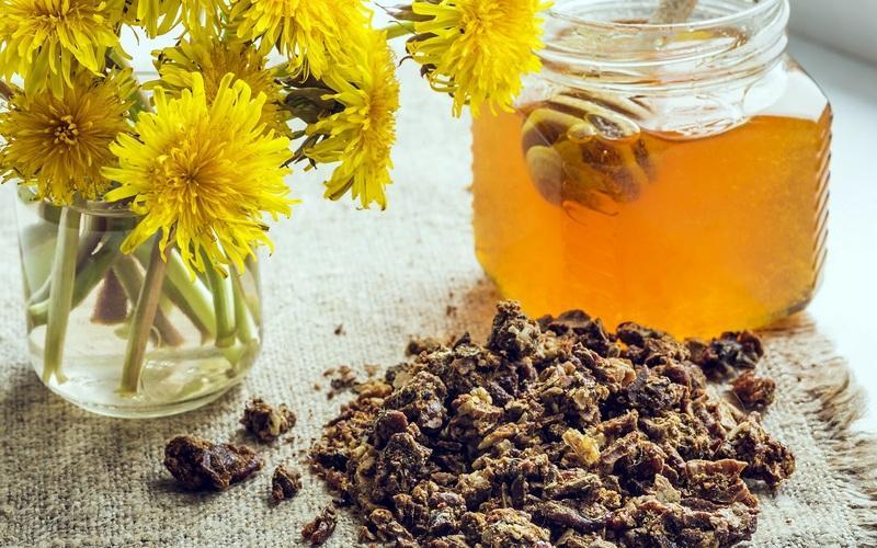 Полезные свойства меда с прополисом и противопоказания