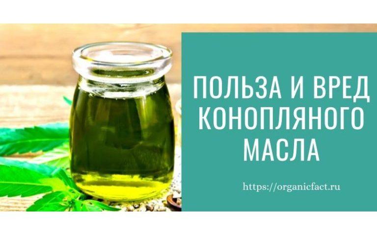 Польза и вред конопляного масла, как принимать