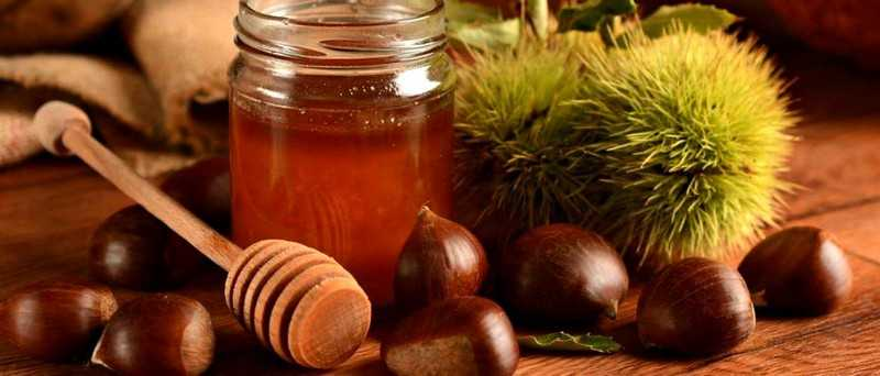 Рецепты с каштановым медом для здоровья и красоты