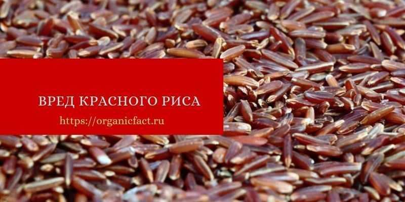 Вред красного риса