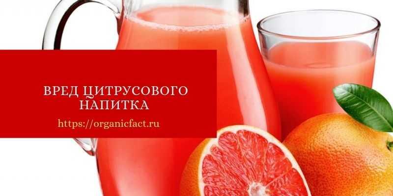 Вред цитрусового напитка и противопоказания для его потребления