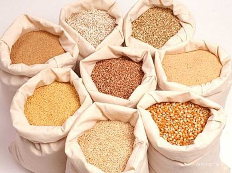 Чтобы произвести функциональный пищевой продукт «Талкан» используют необмолотое цельное зерно