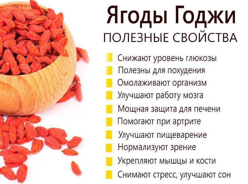 Химический состав и общие полезные свойства ягод годжи
