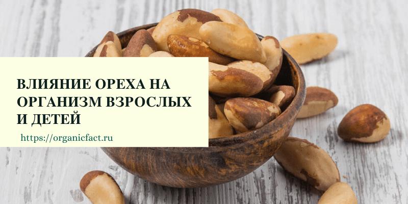 Как влияет на организм бразильский орех