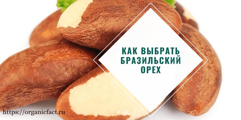 Как выбрать хороший бразильский орех и проверить его качество