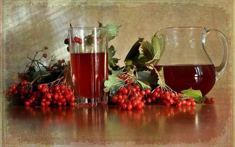 Настойка из калины рецепты на водке, на спирту