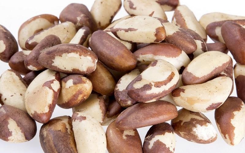 Состав и свойства бразильского ореха, польза