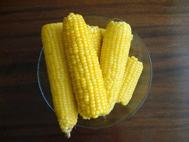 Вареная кукуруза при похудении