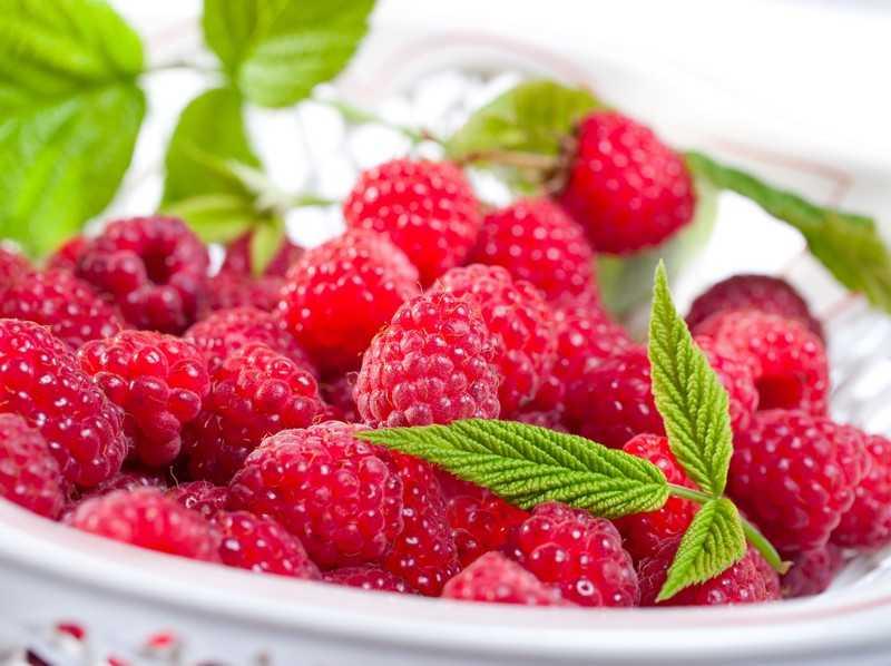 Как правильно употреблять малину и какими дозами