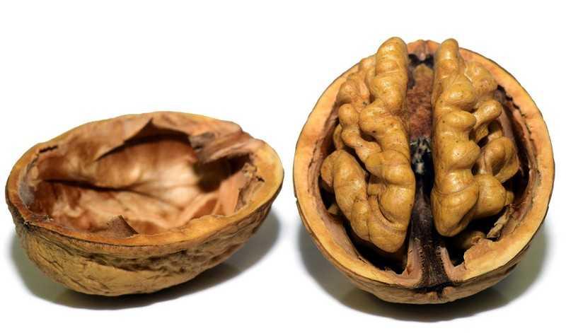 Как применять грецкий орех в домашних условиях