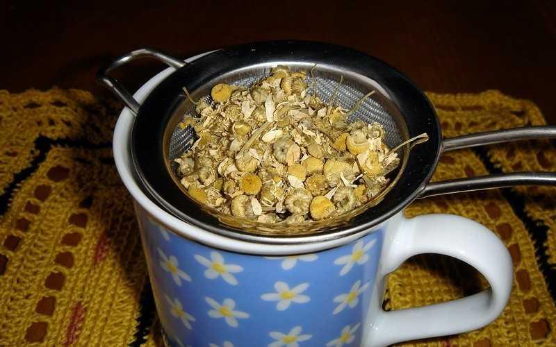 Ромашковый чай, польза и вред