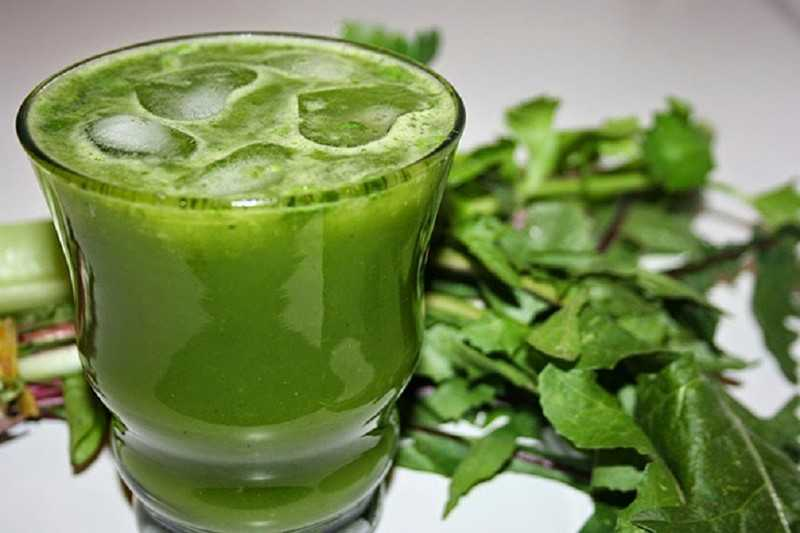 Сок и отвары, приготовленные из растения одуванчик лекарственный восстановят утраченные силы