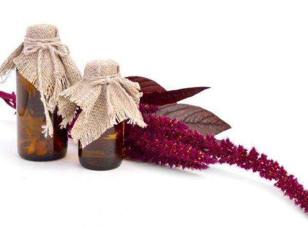 Свойства амарантового масла, применение, польза и вред