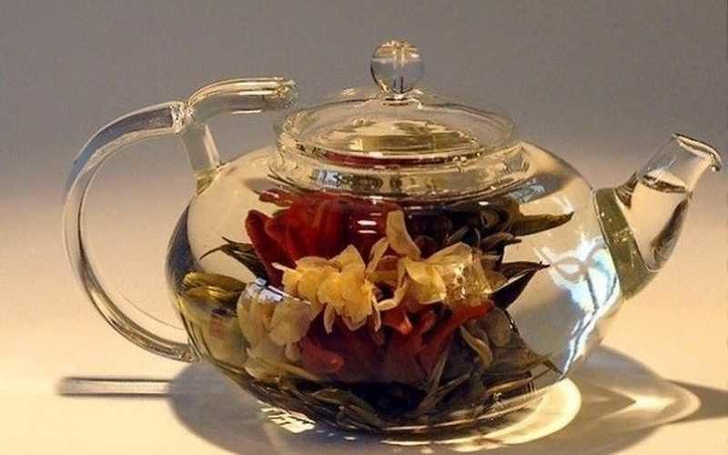 Чай с лотосом — польза, вред, как заварить