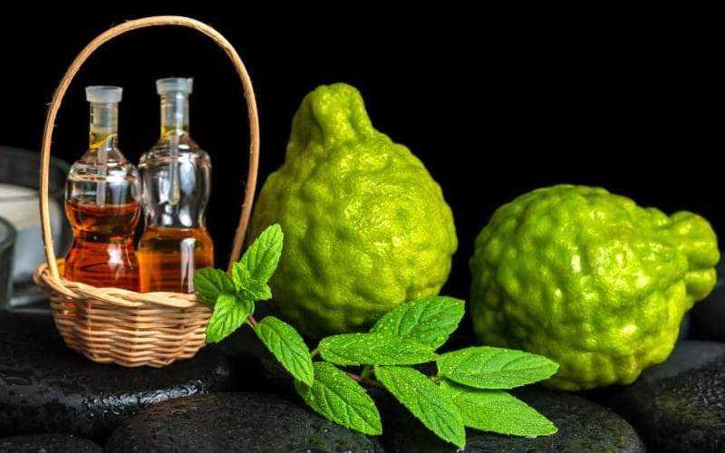 Эфирное масло бергамота — свойства, применение, польза, как использовать