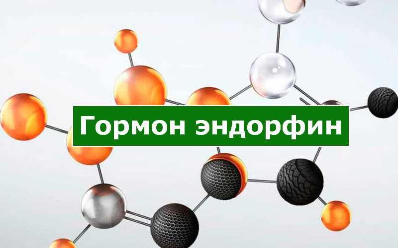 Гормон эндорфин — что это простыми словами, как выработать