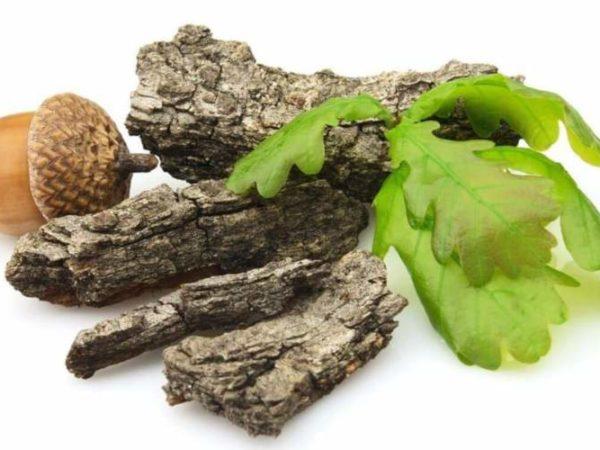 Дубильные вещества — влияние на организм, польза, вред, где содержатся