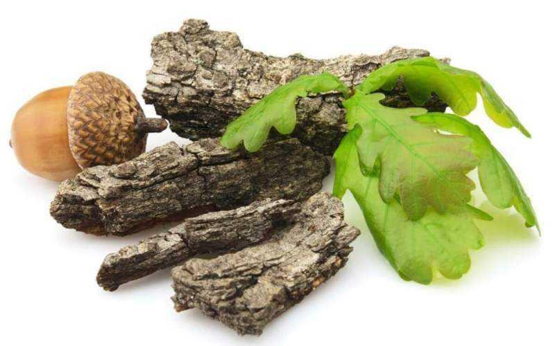 Влияние дубильных веществ на организм, польза и вред, где содержатся