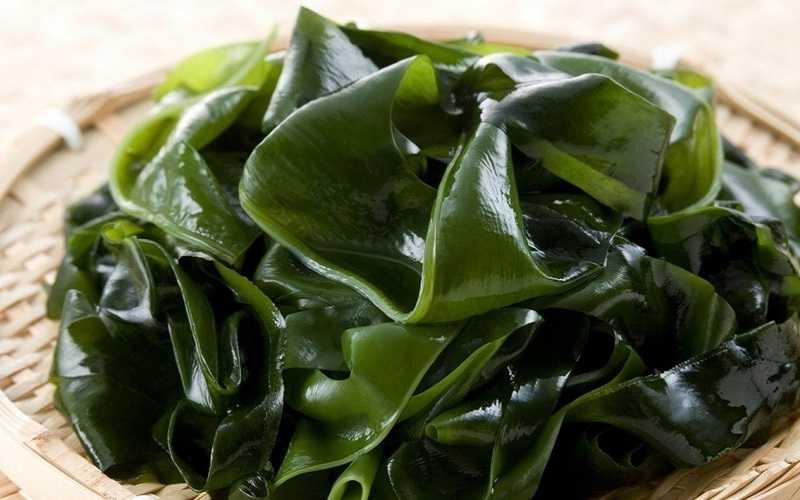 Морские водоросли также способствуют выработке коллагена