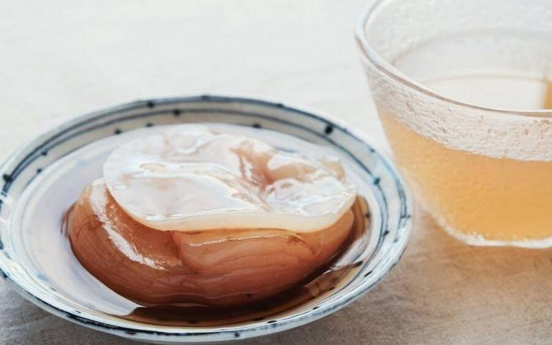 Что такое чайный гриб