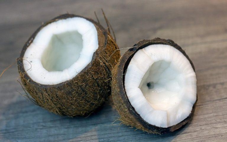 Польза и вред кокоса для здоровья, как принимать, калорийность