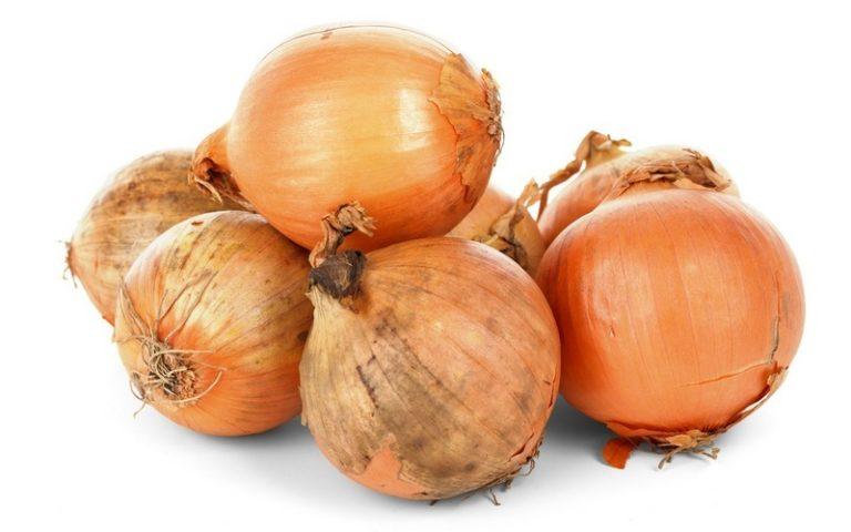 Репчатый лук: польза и вред, калорийность, витамины, свойства, состав